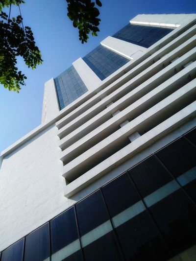 office building in bangkok Thailand Building Tall Building Exterior Architecture Sky Bluesky Blue Sky Shine Sunshine Day City Tree Modern Skyscraper Urban Skyline Sky Architecture Building Exterior Built Structure Office Building Skyline Tower Tall Tall - High Office Building Exterior