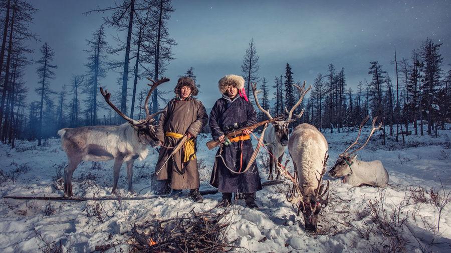 Men standing by reindeer on snow