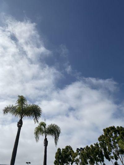 White cloudy
