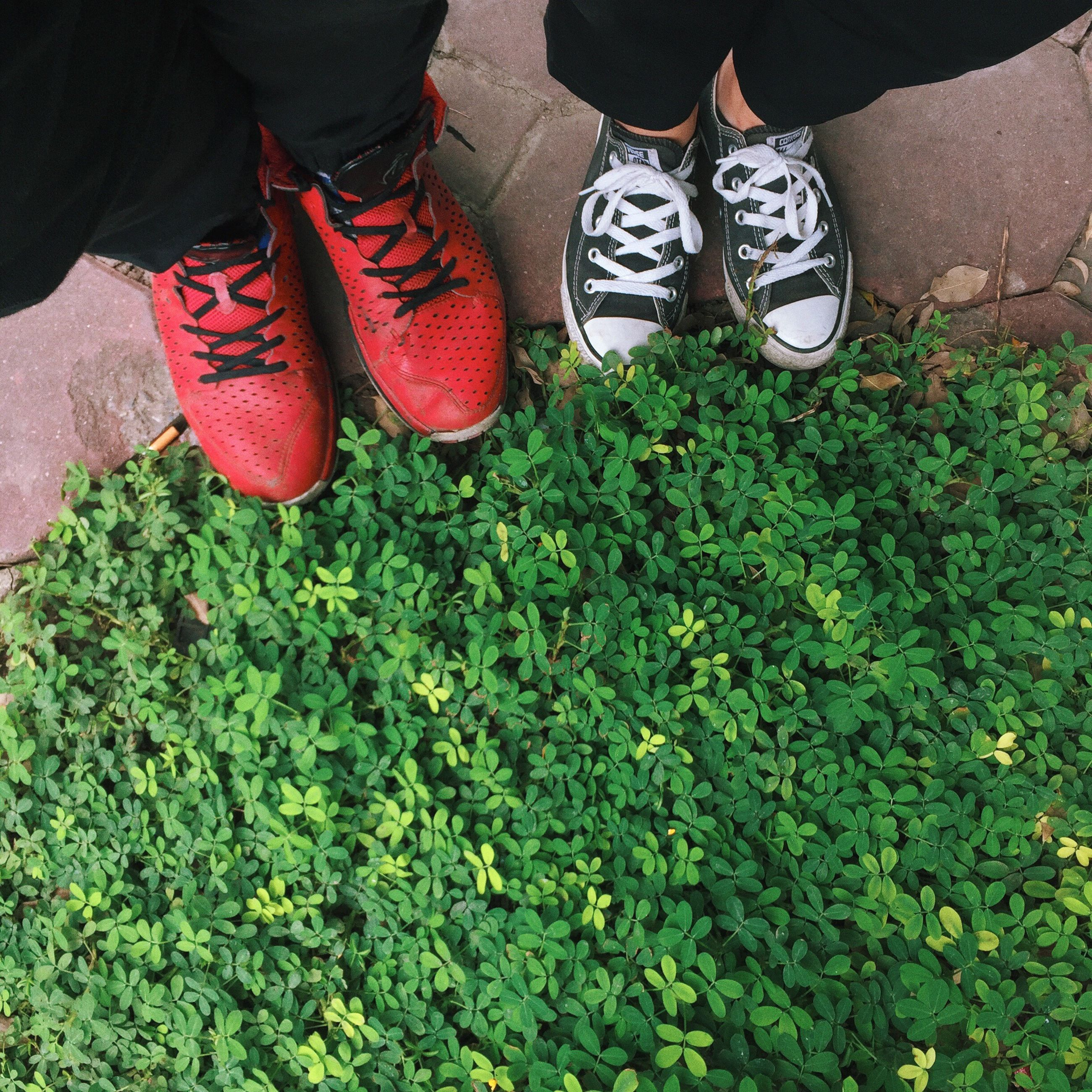 standing, low section, person, shoe, high angle view, togetherness, green color, footwear, human foot, field, culture, limb