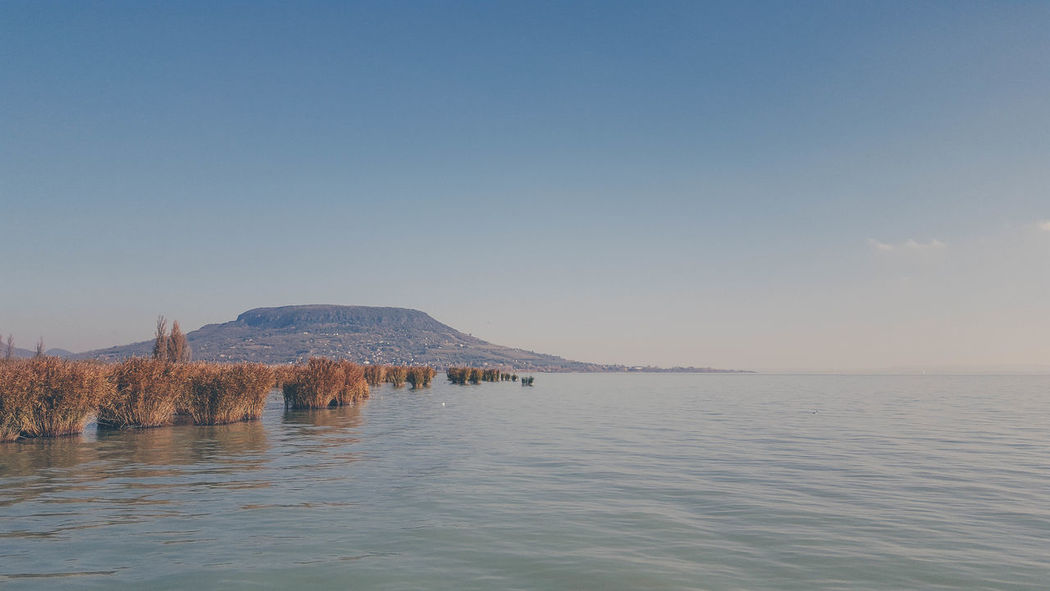 Badacsony Beautiful Beautiful Nature Hungary Love Peace Quiet Moments Balaton Beauty In Nature Clear Sky Lake Lake View Lovely Nature No People Outdoors Scenics Sea Tranquil Scene Tranquility Vintage Water Waterfront Wine Wine Region