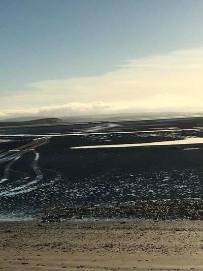 Oyster farming on Donegal Bay Oyster  Donegal Ireland Oyster Farm Beach Sea Sand Nature Water Shore Beauty In Nature