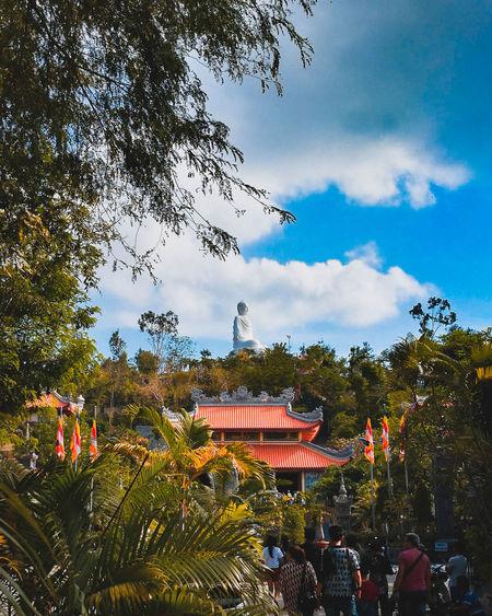 Tree Arts Culture And Entertainment Amusement Park Sky