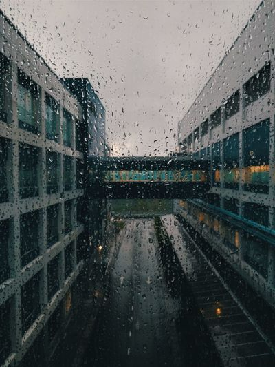 Sometimes rain give you comfort. Architectural Design Malaysia Kulim Water City Backgrounds RainDrop Drop Wet Window Rainy Season Rain Glass - Material Droplet Office Building Water Drop Glass Office Block EyeEmNewHere Be Brave