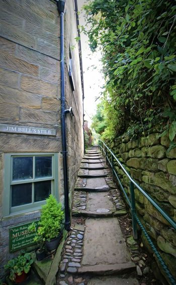 coastal village Holiday Robin Hoods Bay Yorkshire Alley Architecture Building Building Exterior Built Structure Day Direction Footpath Growth House Nature No People Outdoors Plant Railing Residential District Staircase Stone Wall The Way Forward Tree Wall Window