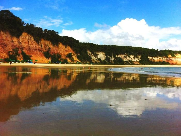 Dolphin bay, nice memories. Brazil Water Reflections Dolphins Life Is A Beach