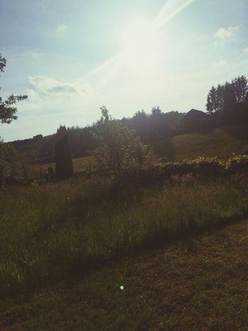 Hallo World Goodmorning Austria ❤ EyeEm Nature Lover Grandpa Holidays Sunny Day Sohappy😁😄