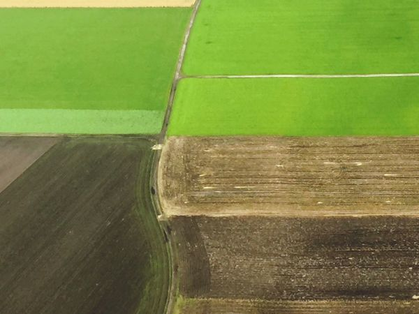 Green Color No People High Angle View Day Grass Outdoors Close-up Nature From Airplane Window Fields Plowed Field Agricultural Land Top Perspective