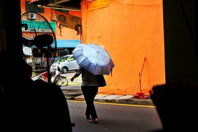 Woman with umbrella walking by building on street in city