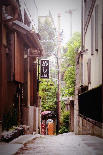 Kyoto Maiko Streetphotography Street Photography Japan Kimono Geisha Back Alley Japanese Culture Japan Photography