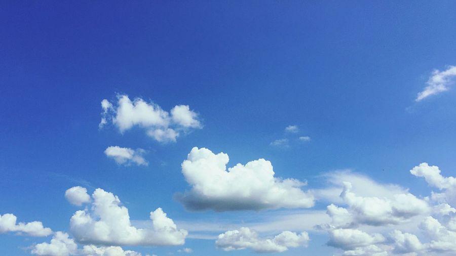 Blue Cloud -