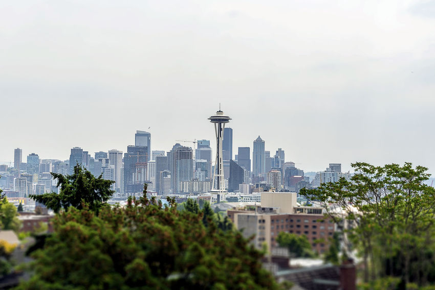 Seattle skyline from Kerry park. Architecture Building Exterior Built Structure City Cityscape Day Downtown District Modern No People Outdoors Overcast Seattle Sky Skyscraper Space Needle Tower Travel Destinations Tree Urban Skyline Weather