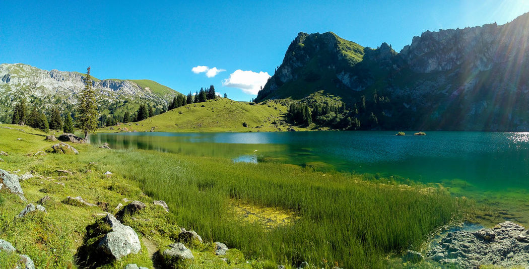 Mountain Lake Trekking Beauty In Nature Day Grass Green Color Idyllic Lake Landscape Mountain Mountainlake Nature No People Outdoors Rock - Object Scenics Seebergsee Sky Sunlight Switzerland Tranquil Scene Tranquility Tree Water