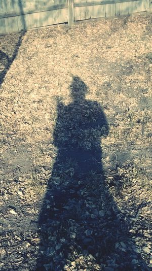 Shadow Light And Shadow Sunny Day❤ Sunny Day☀