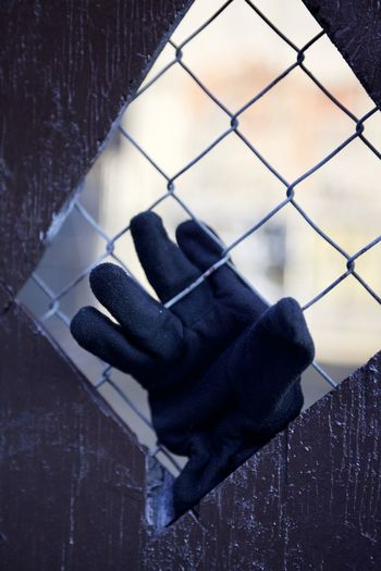 Close-up of hand holding metal fence