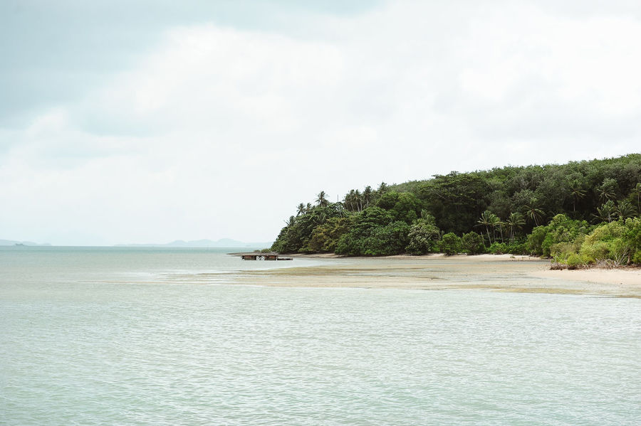 Phuket Thailand Beach Beauty In Nature Coconut Island Day Nature No People Outdoors Sand Scenics Sea Sky Tranquil Scene Tranquility Tree Water Waterfront