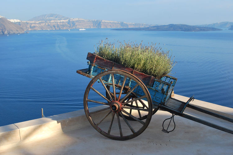 Cart By Sea