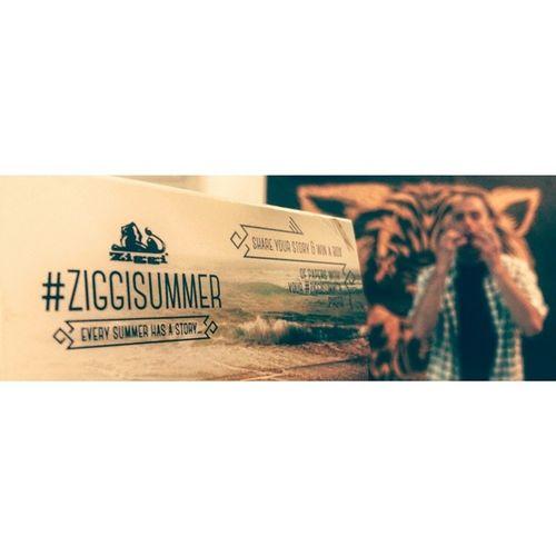 Every summer has a story... Ziggisummer Tekochee Sabljastitiger