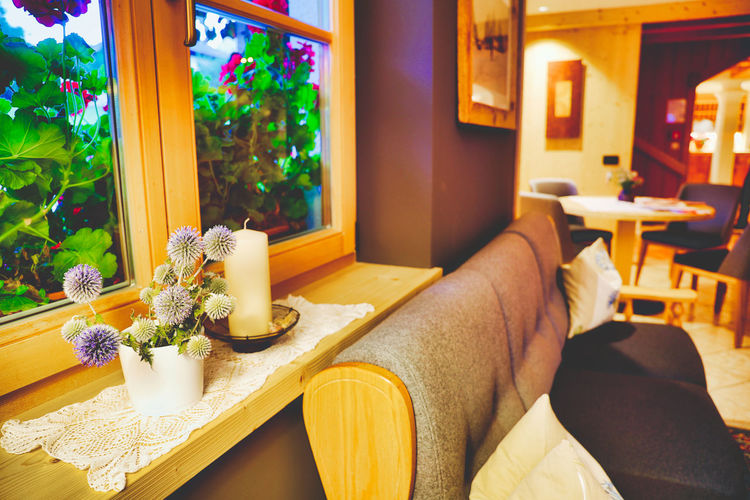 Flower Flowering Plant Indoors  Table Chair Plant Seat Window Furniture Home Interior Lifestyles Relaxation Nature Wood - Material No People Food And Drink Domestic Room Architecture Freshness