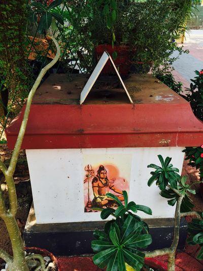 Spiritual Awakening Shiva Aum Lightforlife Prayer Awakening