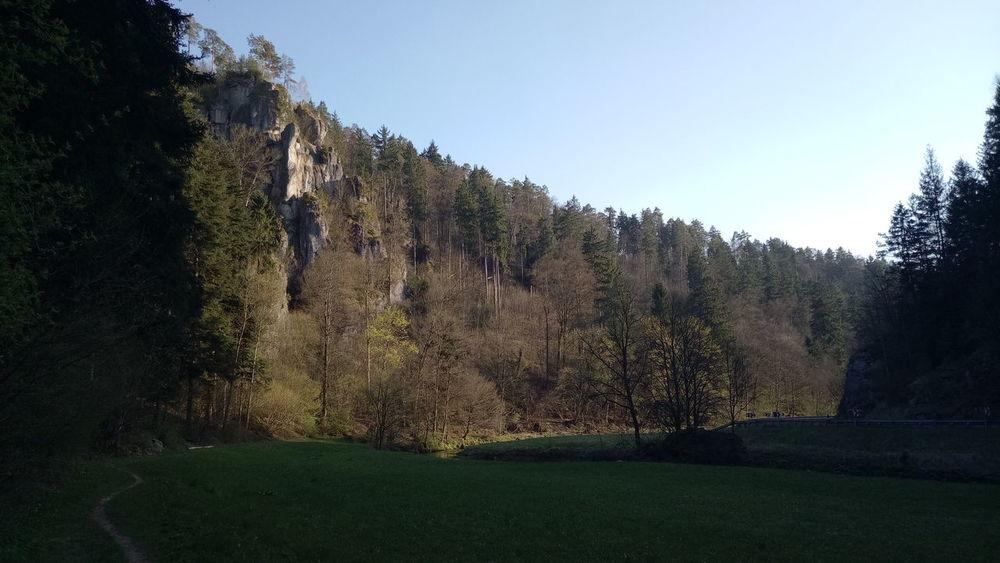 Abendstimmung Wald Wiese Weg Natur Felsen Wiesenttal