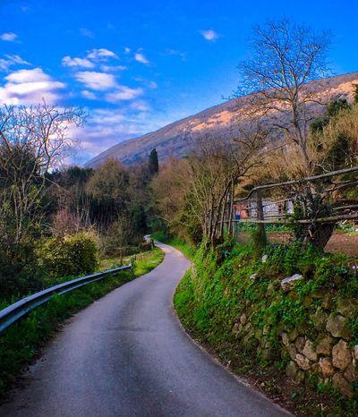 IPS2016Nature ShotOniPhone6 Makemoments Momenttele Momentlense Thelongandwindingroad Village Italia Landscapes With WhiteWall