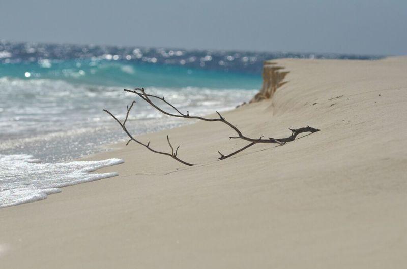 Como la arena y el mar, que con cada ola rozas mi piel!!! Landscape Eye4photography  Islalatortuga