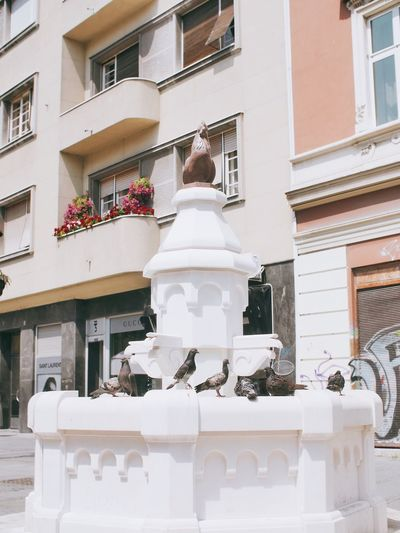 Low angle view of white sculpture against building