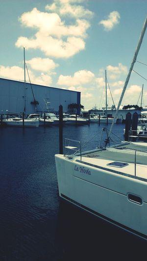 Dania, Florida Youshouldbehere Androidography Florida HTC http://BeachCam.WorldVentures.Biz