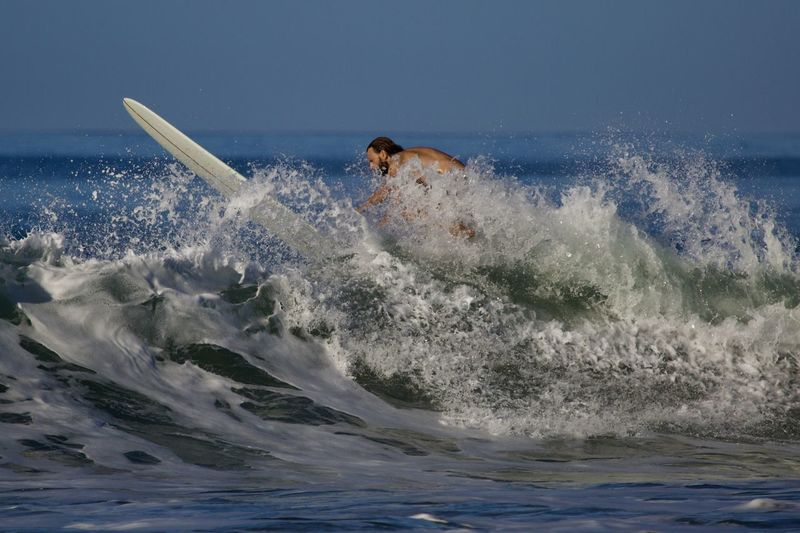Sea Water Motion Sport Aquatic Sport One Person Surfing Wave Adventure Extreme Sports Skill  Splashing Determination Power In Nature Power Nature Leisure Activity Lifestyles Outdoors Horizon Over Water Effort