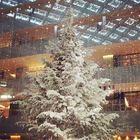 KITTE X'mas treeクリスマスツリー