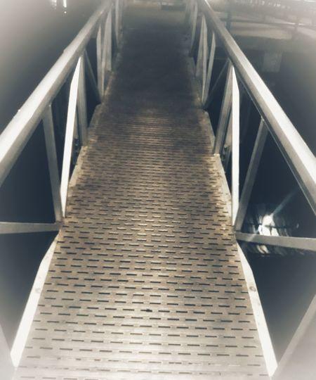 The Bridge of