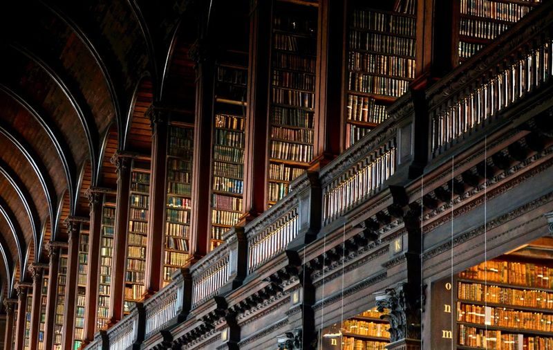 Abundance Architecture Book Bookshelf Building Built Structure Ceiling Education History In A Row Indoors  Large Group Of Objects Learning Library Low Angle View No People Order Publication Shelf Side By Side The Past