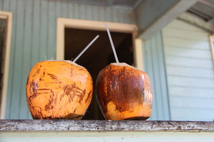 Coconut Enjoying The Sun Paramaribo Porch Suriname Thirsty  Tropical Paradise Celebrating Summer Close-up Coconuts Enjoying Life Focus On Foreground Food And Drink Freshness Fruit Healthy Eating No People Plantation House Ready-to-eat Sharing A Moment Straw Summer Togetherness