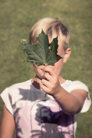 Close-up of boy holding leaf