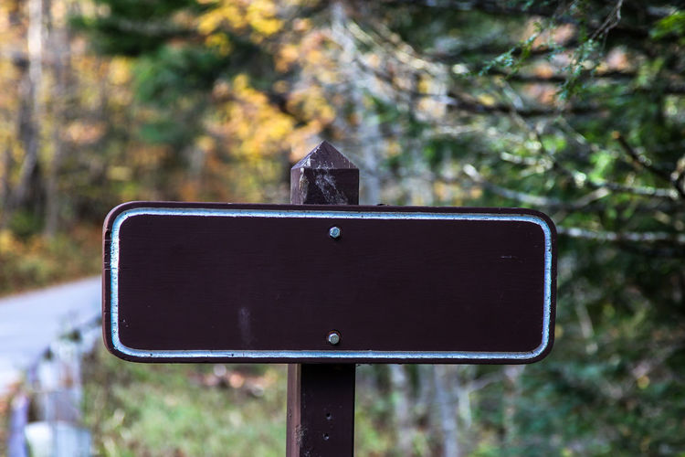 Empty sign with autumn colors Close-up Communication Day Direction Focus On Foreground Information Land Nature No People Outdoors Road Road Sign Sign Text Tree Wood - Material