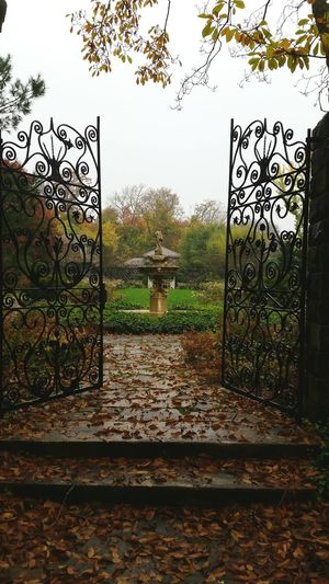 Wrought Iron Fencing Gate Wroughtiron Wrought Iron Design Wrought Iron Gates Gates At The Gate Gateway Gateways Wrought Iron