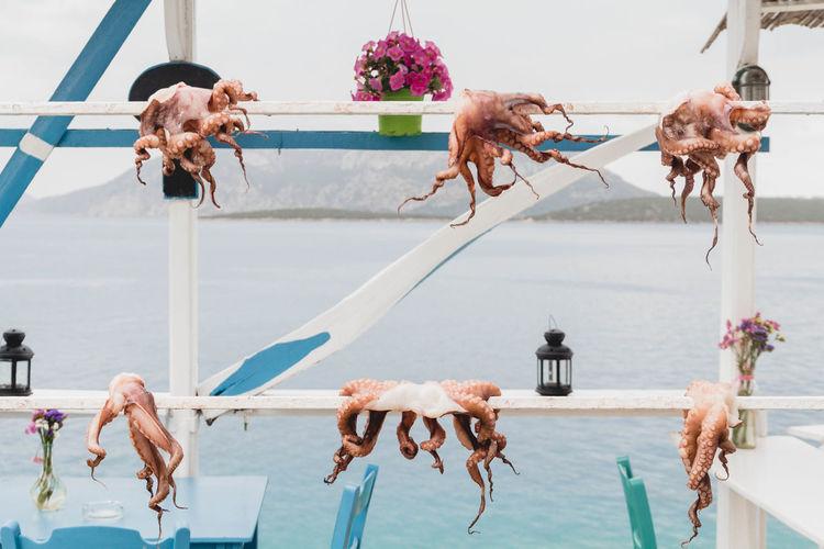 Food on railing against sea and sky