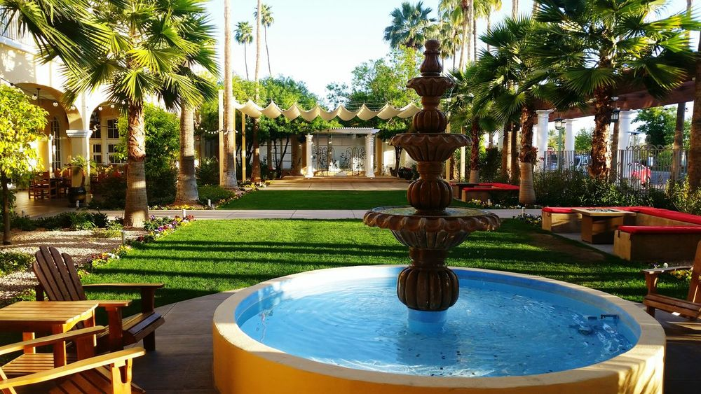 Fountain Outdoors Good Morning Greenery EyeEm Nature Lover Relaxing Beautiful Surroundings Enjoying Life
