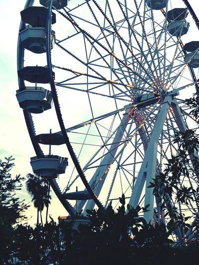 Pike place long beach ca. Good to be home. Amusement Park Amusement Park Ride City Ferris Wheel Long Beach, California USA