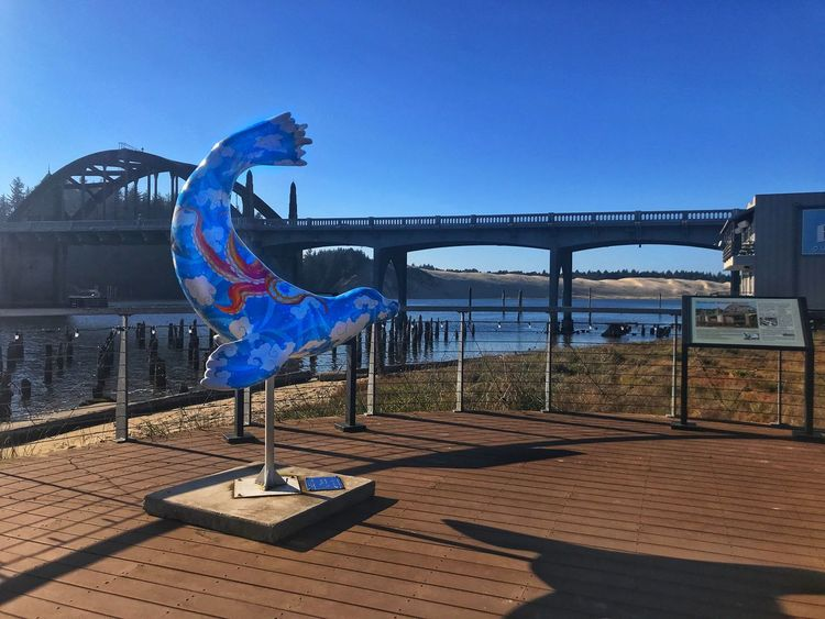 Florence, Oregon Destination Siuslaw River Bridge Siuslaw River Sea Lion Sculpture Sky Clear Sky Nature Blue Architecture Built Structure Day Art And Craft Shadow Building Exterior Sunlight Copy Space River Outdoors Bridge - Man Made Structure Railing Water No People Metal