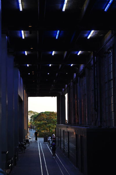 EyeEmNewHere High Line Park New York Architecture Blue Light Bridge - Man Made Structure Built Structure Illuminated Rail Rail Transportation Real People The Way Forward Transportation