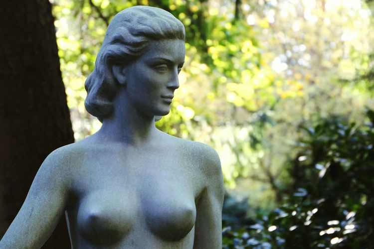 Statue Outdoors Beauty Statue Forest Sculpture Beautiful Art Stone Female Statue Art Beautiful Arts Arts Culture And Entertainment A Closer Look Sculptures Made Of Stone Fragility Into The Woods Beautiful WomanFemale Statues Female Beauty Female Female Sta