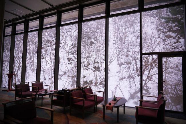 2017 Architecture Cafe Cold Temperature Hanatouro Hot Spring Indoors  Interior Japan Lobby Nature Room Snow Table Tochigi Tree Window Winter 栃木 湯西川温泉 花と華 Yunishigawa