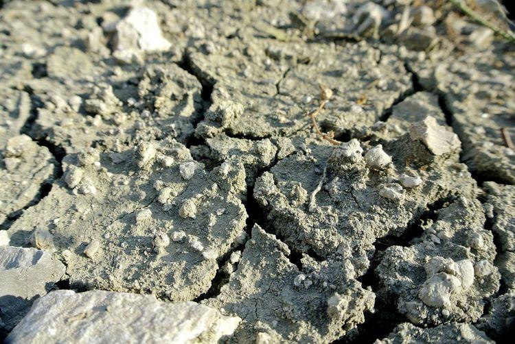 Earth Terre Crack Wet