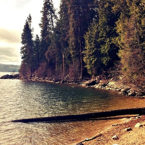 TubbsHill one of my favorite places in Cda Lake Coeurdalene 1picaday Day10