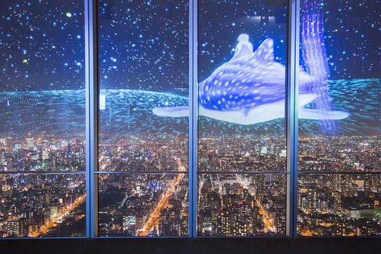 天空の海? Nightphotography OSAKA Japan Galaxy Star - Space Space Astronomy Illuminated Blue City Cityscape Multi Colored Luminosity
