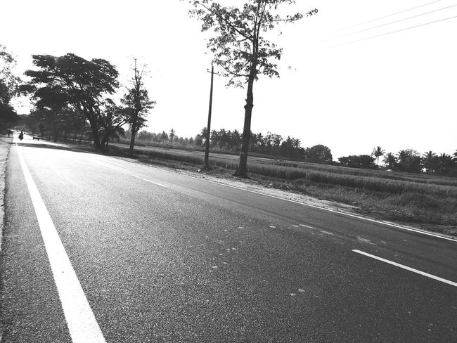 Asphalt Black Black & White Black And White Black&white Blackandwhite Country Road Day Direction Empty Road Leading Outdoors Road Street The Way Forward Tree Vanishing Point