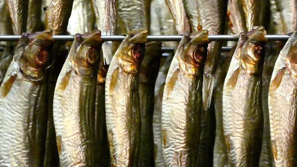 Close-up Dried Fish  Fisch & So Fische Fischerei Fish Fishing Food Food And Drink Freshness Healthy Eating Large Group Of Objects Market Market Stall No People Räucherfisch Seafood Smoked Fish Sprats Sprotten