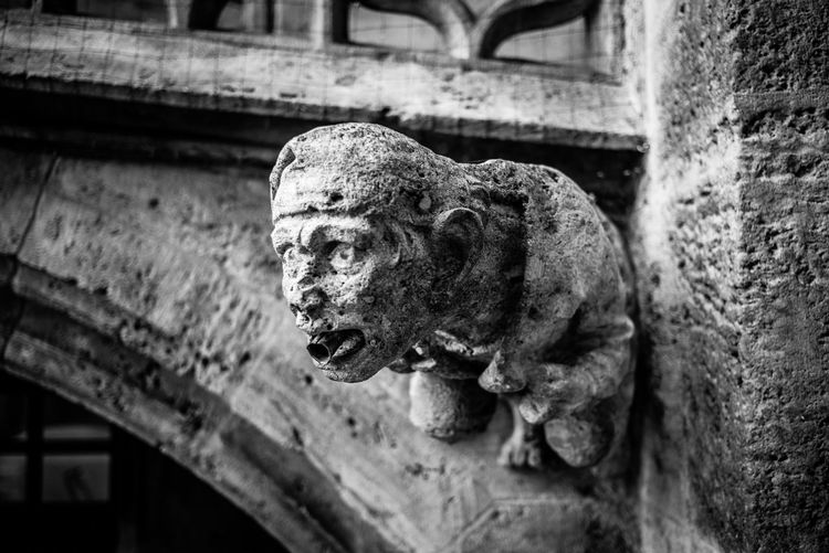 Representation Sculpture Statue Architecture Built Structure Art And Craft Animal Representation Focus On Foreground No People Old Creativity Day Craft Gargoyle History Close-up Building The Past Weathered Building Exterior Ruined